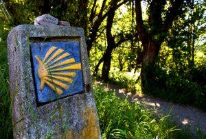 Camino-de-Santiago-Portugues