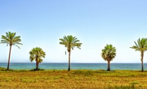camino portugues por la costa.jpg!d